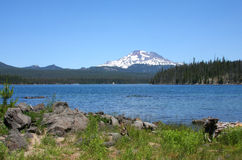 South Sister from Lava Lake Stock Photography