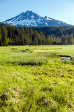South Sister and Meadow Stock Photography