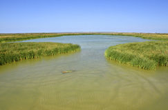 South Texas Wetlands. View across wetland habitat, Port Aransas, south Texas, United States Stock Photos