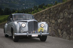 South tyrol classic cars_2014_Bentley S1_1 Royalty Free Stock Images