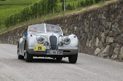 South tyrol classic cars_2014_Jaguar XK 120 Roadster_2 Royalty Free Stock Photos