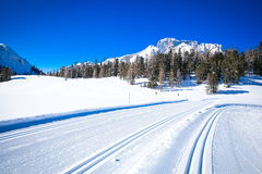 South Tyrol in winter. Cross country track in South Tyrol Royalty Free Stock Photography