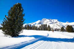 South Tyrol in winter Royalty Free Stock Photography