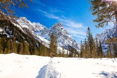 South Tyrol in winter. Winter landscape in South Tyrol with a lot of snow Stock Image