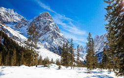 South Tyrol in winter. Winter landscape in South Tyrol with a lot of snow Royalty Free Stock Images