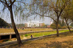 South university of science and technology of chin. A, the campus landscape Royalty Free Stock Photos