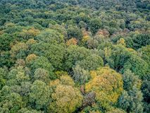 Birds Eye drone view of country park Royalty Free Stock Photo