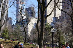 South West Central Park 6 Royalty Free Stock Photo