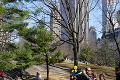 South West Central Park 12 Stock Image