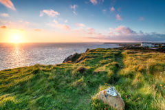 The South West Coast Path. On cliffs above Mullion Cove on the Lizard Penisula in Cornwall Royalty Free Stock Photo