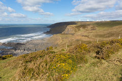South west coast path north of Sandymouth beach Cornwall England UK Stock Image