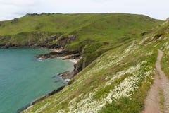 South west coast path Starehole bay near Salcombe Devon England uk Royalty Free Stock Photos