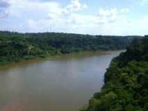 Southamerican dżungla widok zdjęcia royalty free