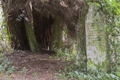 The Old cemetery on Southampton Common stock photography
