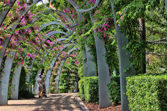 Southbank walk. A mother and her son enjoying the Southbank's pergola in Brisbane, during summer Stock Photos