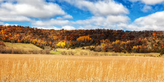Southeast MN Autumn. An autumn valley in rural southeast Minnesota Stock Photography