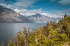 The Southern Alps Stock Photo