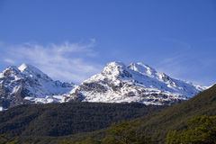 Southern Alps, New Zealand. View of Southern Alps, New Zealand green hills in foreground Royalty Free Stock Photos