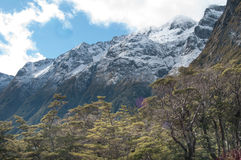 Southern Alps , New Zealand Stock Photo