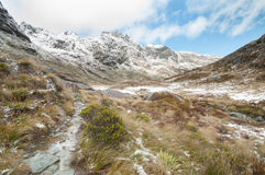 Southern Alps snow , New Zealand Stock Image
