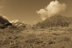 Southern Alps, South Island landscape in sepia. Royalty Free Stock Photo