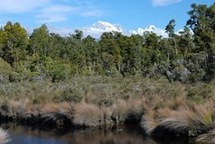 Southern Alps. View from Gillespies lagoon Royalty Free Stock Photo