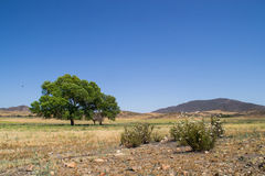 The Southern California landscape. Royalty Free Stock Photos