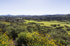 Southern California Suburban Spring Royalty Free Stock Photo