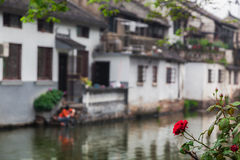 Southern China in spring Royalty Free Stock Photo