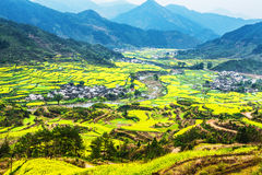 Southern China in spring Stock Photography