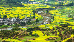 Southern China in spring Royalty Free Stock Images