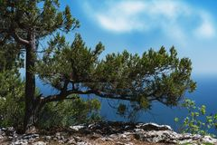 Southern coast of Crimea- extreme hiking Royalty Free Stock Photos