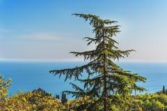 Southern coast of Crimea- extreme hiking Royalty Free Stock Images