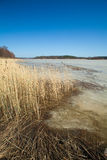 Southern Finland, early spring Royalty Free Stock Photo