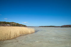Southern Finland, early spring Royalty Free Stock Photos