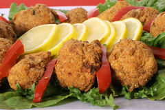 Southern fried appetizers Stock Photography