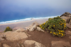 Southern Fuerteventura, Jandia Royalty Free Stock Images