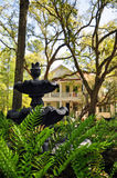 Southern Garden Stock Photo