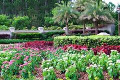 Southern Garden. A garden area in South Carolina royalty free stock photo