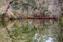 Southern Garden Landscape Charleston South Carolina Stock Photos