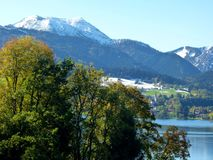 Southern german landscape with trees in the foreground - a lake and snow-covered mountains as a back-ground 2. Green foliage in front of blue-blue mountain and stock photo