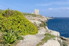 Southern Gozo Coast – Gozo, Malta. Gozo's beautiful coast and its watch towers – Gozo, Malta Stock Photography