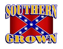 Southern Grown Rebel flag with marijuana leaf stars Royalty Free Stock Photos