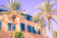 Southern house with blue colored windows near palm trees toned stock photos