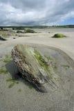 Southern Ireland beach Stock Photos