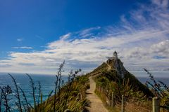 Walking path to the Nugget point lighthouse near Kaka Point stock images