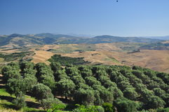 Southern Italian countryside Landscape. Region of Basilicata Stock Image