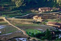 Pastoral scenery Stock Photography