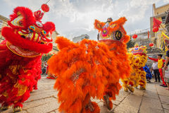 Southern Lion Dance at Eye Opening ceremony, Lady Thien Hau pagoda, Vietnam. Colourful lions performing in front of the gate of pagoda at Eye Opening ceremony stock image