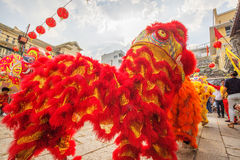 Southern Lion Dance at Eye Opening ceremony, Lady Thien Hau pagoda, Vietnam. Colourful lions performing in front of the gate of pagoda at Eye Opening ceremony stock photos